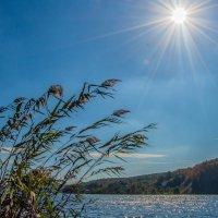 Белгородское водохранилище :: олеся тронько