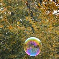 Осенний пришелец..... :: Tatiana Markova