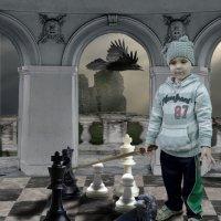 Шах и мат...потом... :: Александр Мартынов