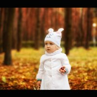 Осень :: Julia Novik