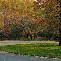На прогулке в парке городском... :: Александр Попов