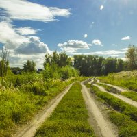 Грунтовая дорога :: Дима Пискунов