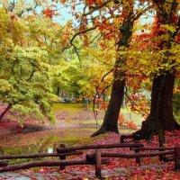 Когда приходит осень :: Инна