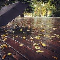 Осень в Музеоне :: AristovArt