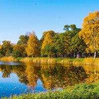 День в октябре :: Виталий
