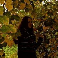 Осень.. :: Шура Еремеева