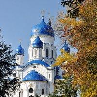 Покровский собор. :: Елена Смирнова