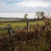 Осень в деревне :: Василий Ахатов