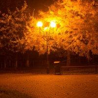 Романтика осени :: Ирина Холодная