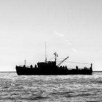 Прогулка в Охотском море. :: Юрий Харченко