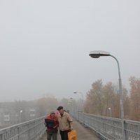 Пришёл туман... :: Елена Миронова