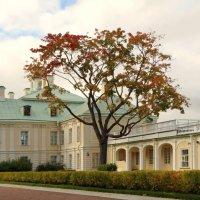 Меншиковский дворец. :: Владимир Гилясев