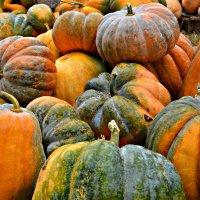 Сочная осень :: Елизавета Царук
