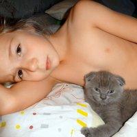 Спят ребятки и котятки! :: Елизавета Успенская