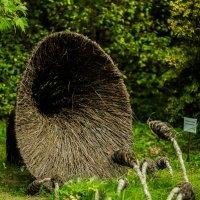 Выставка флористики. :: Nonna