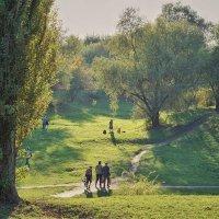 В ботаническом саду :: Андрей Майоров