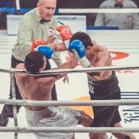 Бойцы в ринге :: Александр Колесников