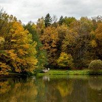Осенняя палитра :: Александр Аполонов