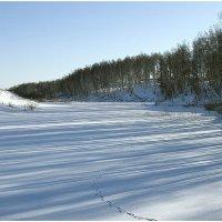 Окрестность села Шаблыкино :: Александр Максимов