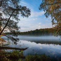 Осенний вечер. :: Sven Rok
