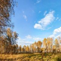 Осеннее :: Николай Мальцев