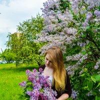 Какой красивый букет :: Света Кондрашова