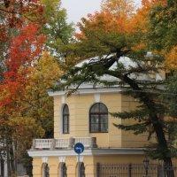 Осень в городе :: Вера Моисеева