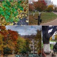 Осенний коллаж. :: Лара ***