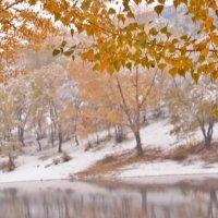 Октябрьская зима :: galina tihonova