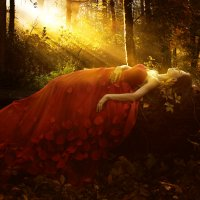 Краски осени :: Anton Shumaev