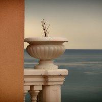 Немного античности и моря :: Екатерррина Полунина