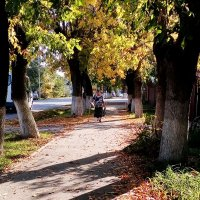 Осень приходит как старость :: Marina K
