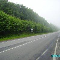 Автодорога  в   Крылосе :: Андрей  Васильевич Коляскин