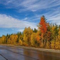 Краски осени :: Дмитрий Сиялов