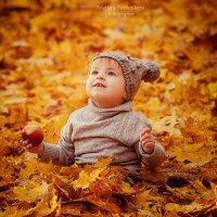 Осень внутри нас... :: Светлана Светленькая