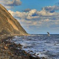 Ещё раз про море :: Константин Николаенко