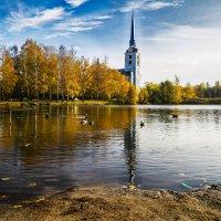 Осенний пейзаж на пруду. :: Алла ************