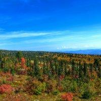 Осенний горный пейзаж :: Милешкин Владимир Алексеевич