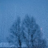 Дождь :: Игорь Смолин