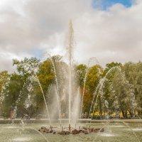 Адмиралтейский фонтан :: Ольга