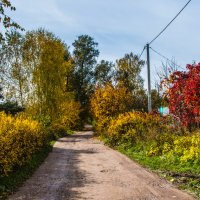 Осень в деревне. :: Владимир Безбородов