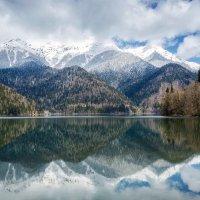 Горное озеро Рица :: Ольга