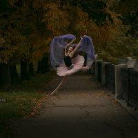 Воздушные танцы :: Владимир Смирнов