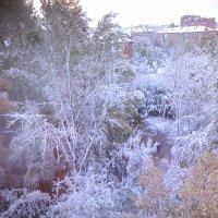Заснеженный Омск за окном :: Елена *