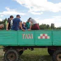 Транспорт для трудных дорог. :: юрий Амосов