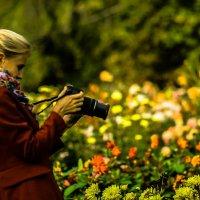 Фотографируем цветы... :: Nonna