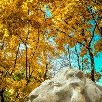 Старый лев... :: Копыткина Юлия