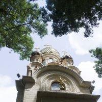 в старом парке Кабардинки :: Ольга Русакова