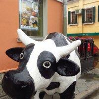 Городская корова :: Андрей Лукьянов