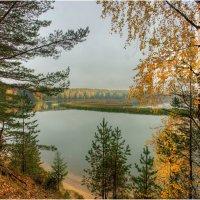 Осень на Мере :: Nikita Volkov